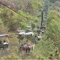 Nanjing Purple Mountain Cableway is about to return. Upgrade from seat type to van type